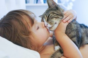 10 Signs Of Cat Love