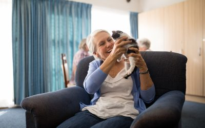 Senior woman Cat-Friendly Assisted Living holding kitten while sitting on armchair